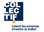 Collectif-des-entreprises-d-insertion_small_color